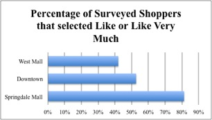 Springdale Shopping Survey: Shopper Insights to Improve Mall Performance (2/4)